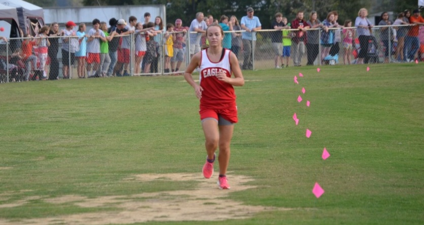albany county cross country meet