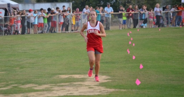 Savannah Shirley of West Union is the 2015 Union County XC Individual Champion. Photo by Dennis Clayton.